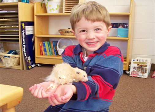 A gleeful kid holding a hamster in his hands